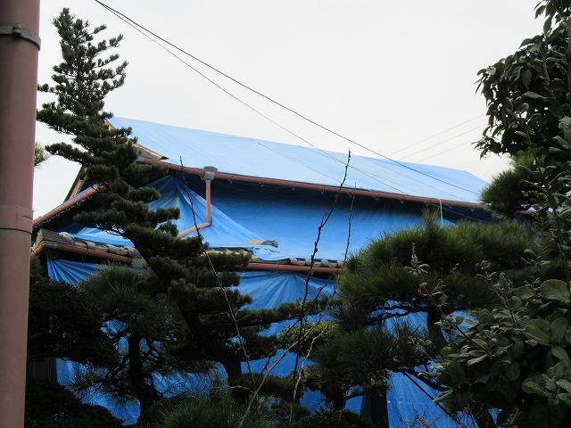 屋根にビニールかけて 28.3.16