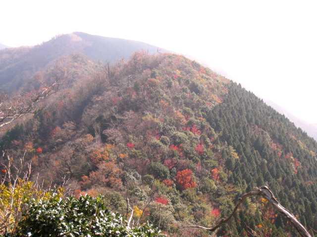 IMG_0037茶臼山方面の紅葉
