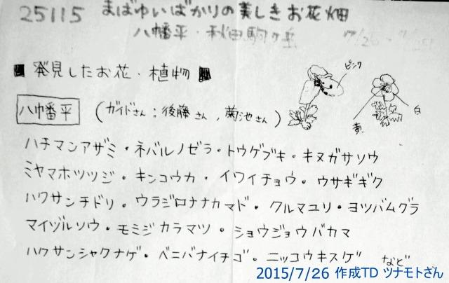 ☆IMGP9749八幡平花