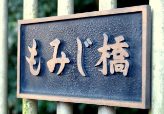 ☆IMGP1168
