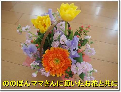 20160308_007.jpg