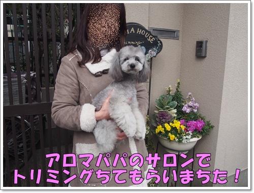 20160316_101.jpg