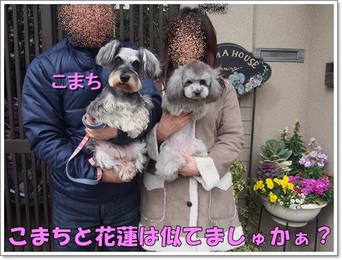 20160316_104.jpg