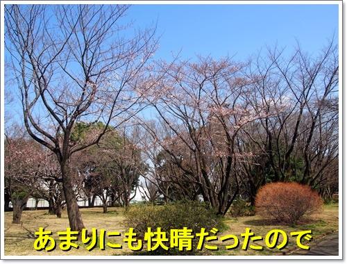 20160326_012.jpg