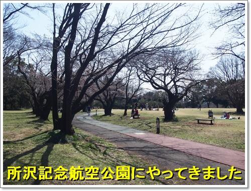 20160326_013.jpg