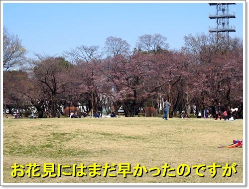 20160326_015.jpg