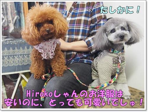 20160327_148.jpg