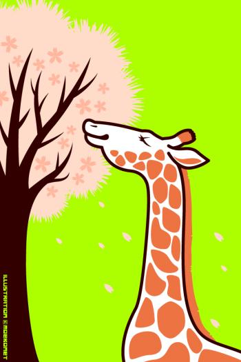 キリン桜イラスト