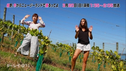 160316紺野、今から踊るってよ 紺野あさ美 (4)