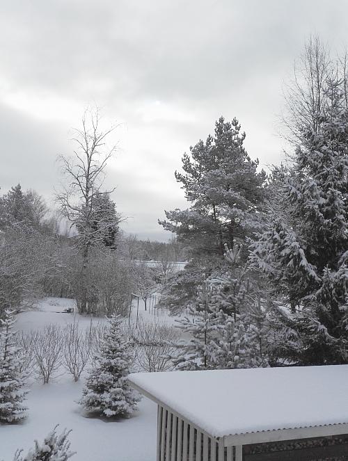 フィンランド南部 3月 雪