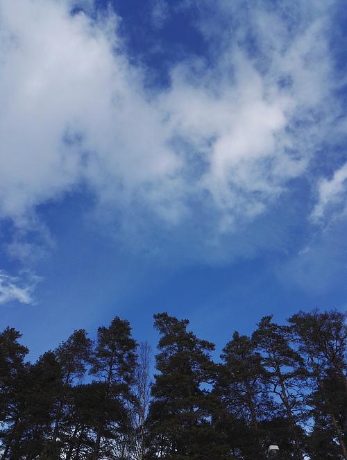 フィンランド 3月 青空