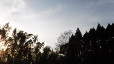 2016.4.9開墾地7