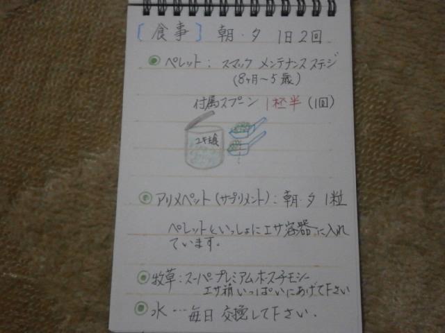 PB181769.jpg