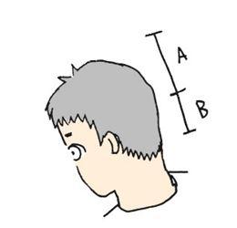 理容師への道2_R