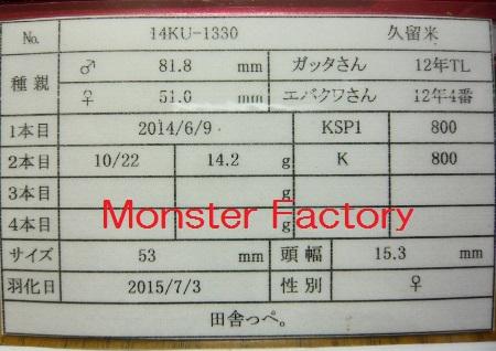 P1020213 (450x318)