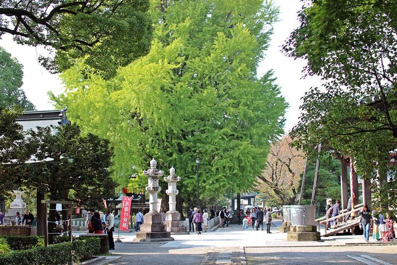 2015-10-24 nobunobuno (10)
