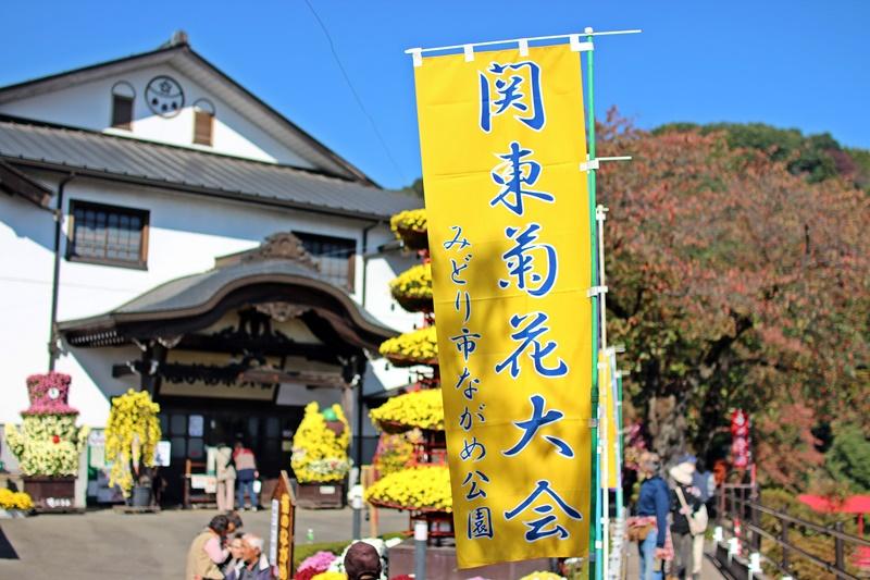 2015-11-05 nobunobuno (26)
