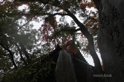 2015.11.15高尾山 20