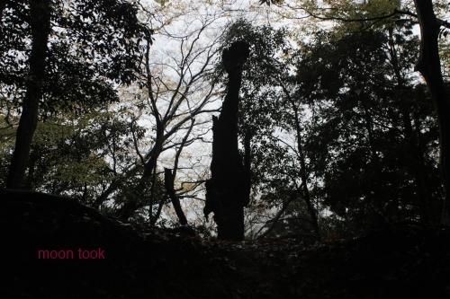 2015.11.15高尾山 4
