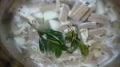塩モツ煮込みローリエ1
