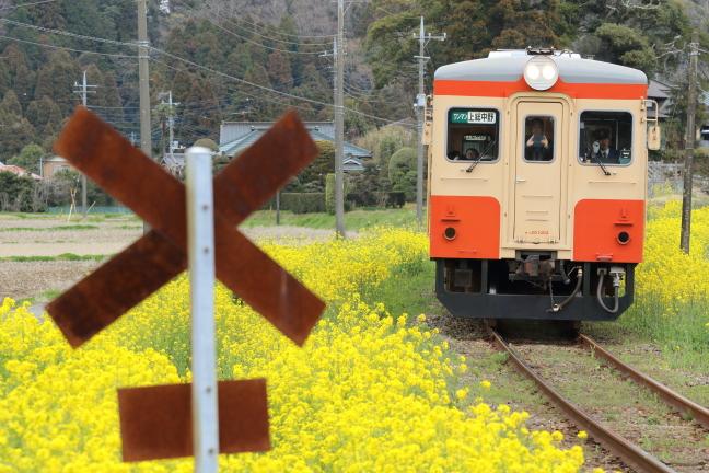 ATSU3567s.jpg