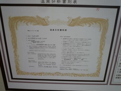 P1240452.jpg
