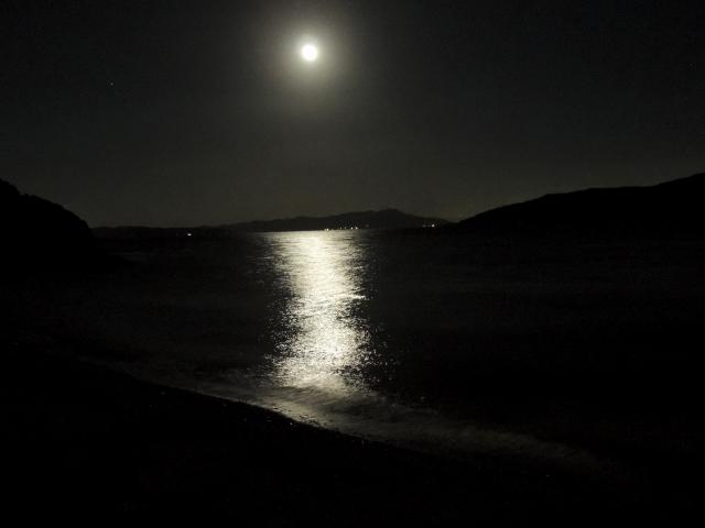 N6531夜に輝く