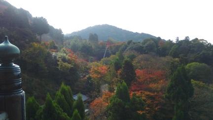 ブログ京都20151120_011