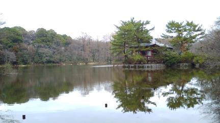 ブログ石神井公園003