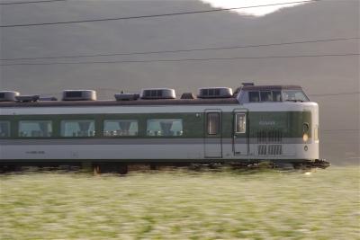 s-IMGP0238.jpg