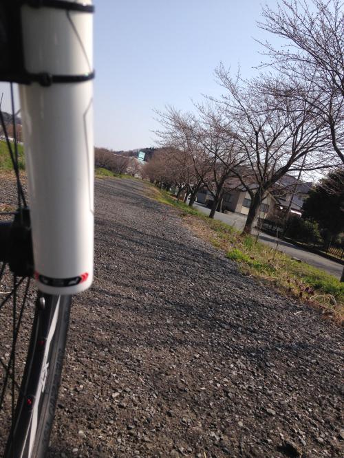 【2016.3.30】通勤風景・4