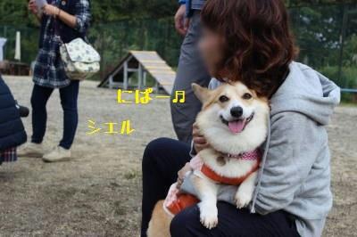 シエルすまーいる☆