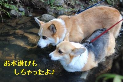お水遊びもしちゃったよ☆
