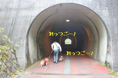 ゆるい坂道