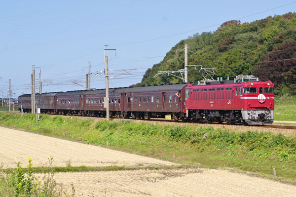 151010yotsugoya-wada9422.jpg