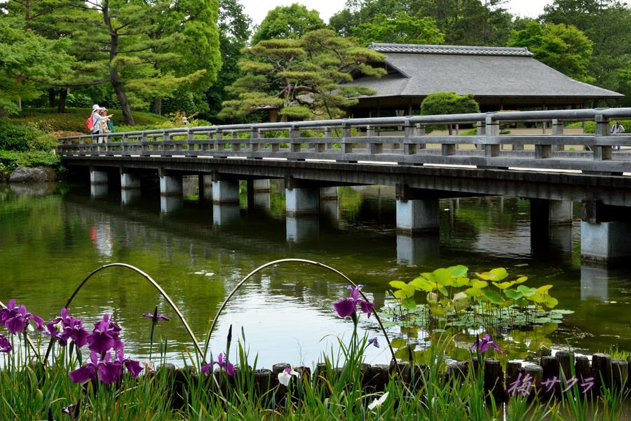 出品作品7日本庭園変更済