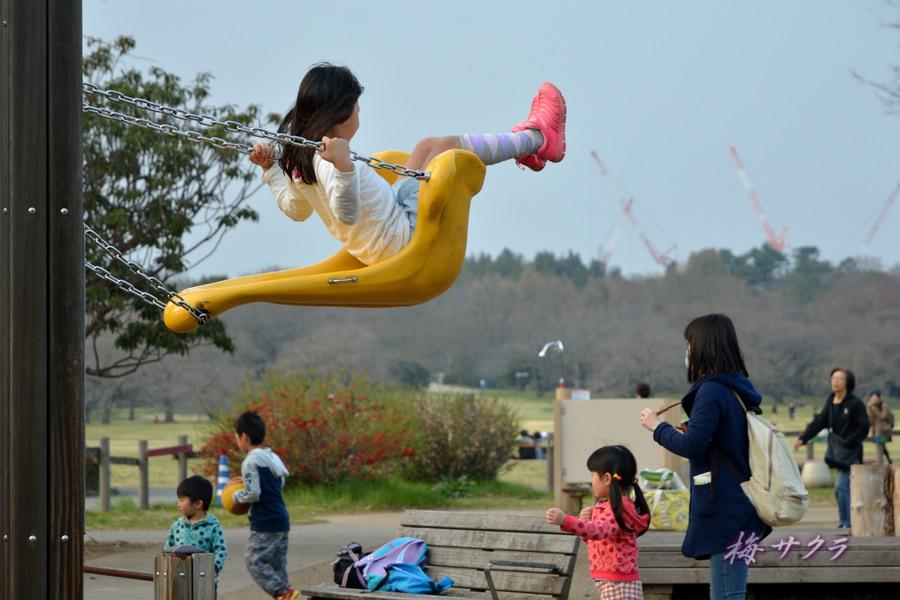 昭和記念公園2(5)変更済