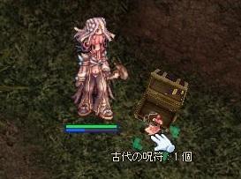 231kinsaku_bako3.jpg