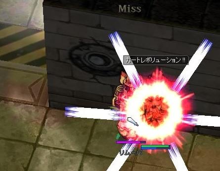 243kinsaku_sana10.jpg