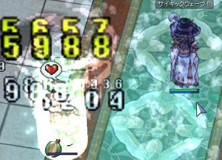 250kinsaku_so2.jpg