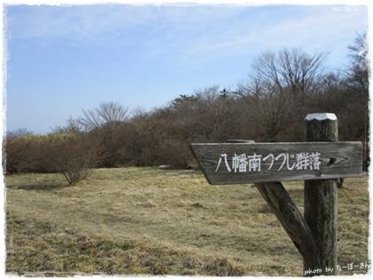 僕らの春旅2-15