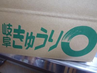 2015.10.10きゅうり-1