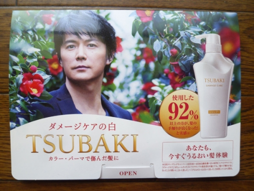 tsubaki-01.jpg