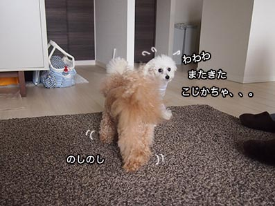 160403_2.jpg