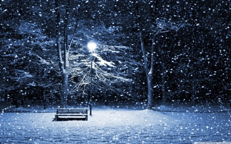 snowing-desktop_wallpaper_winter_scenery_medium.jpg