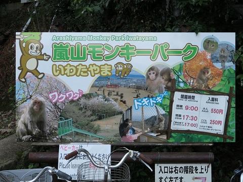 150923_嵐山7