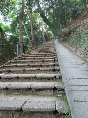 150923_嵐山9