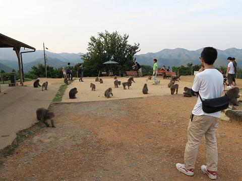 150923_嵐山29