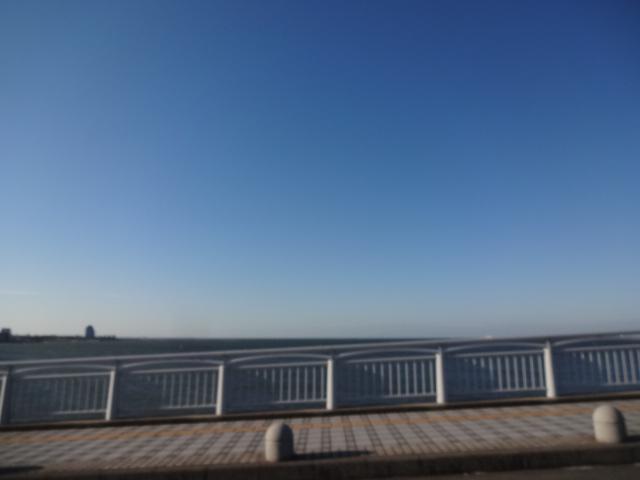 晴天も朝から強風