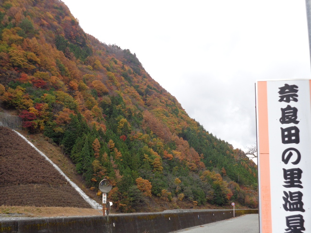 20151110奈良田